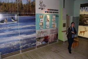 IMGP0575_Rovaniemi-Artikum