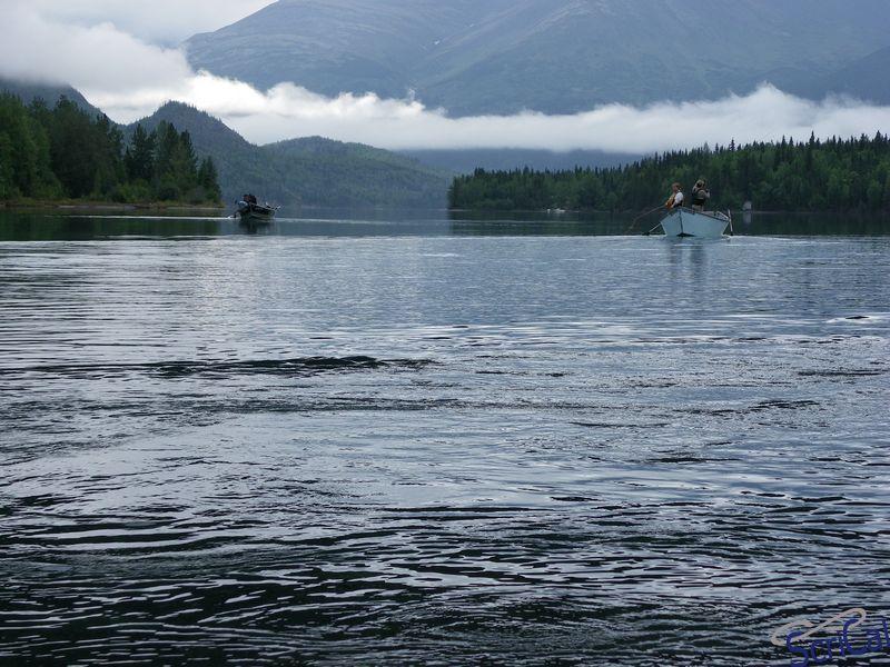 Viaggio in alaska canada e alaska 2009 iii puntata for Cabine del fiume kenai soldotna ak