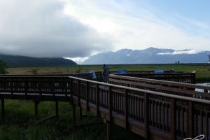 IMGP4136_Seward-Anchorage_PotterMarsh