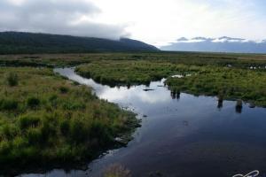 IMGP4149_Seward-Anchorage_PotterMarsh