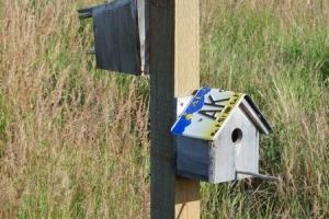 IMGP4163_Seward-Anchorage_PotterMarsh