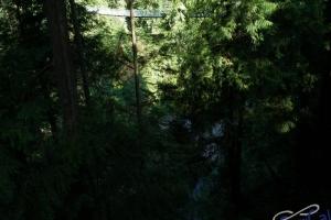 IMGP4305_Vancouver_Capilano