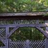 Parco naturale di Bialowieza