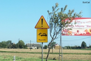 100_3989_cartello.jpg