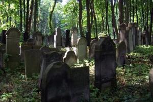 100_3696_ghetto ebraico_cimitero ebraico via opokowa.jpg