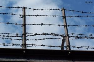 100_3675_ghetto ebraico_prigione pawiak.jpg
