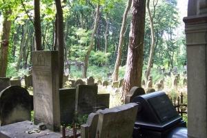 100_3689_ghetto ebraico_cimitero ebraico via opokowa.jpg