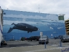 IMGP2719_Anchorage