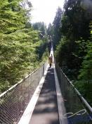 IMGP4312_Vancouver_Capilano
