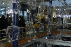 IMGP0203_colonia_schokoladen-museum_res1024