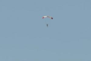 33-paracad1