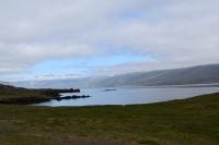 DSC_0021_strada-verso seydisfjordur