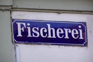100_2556_Bamberg.jpg