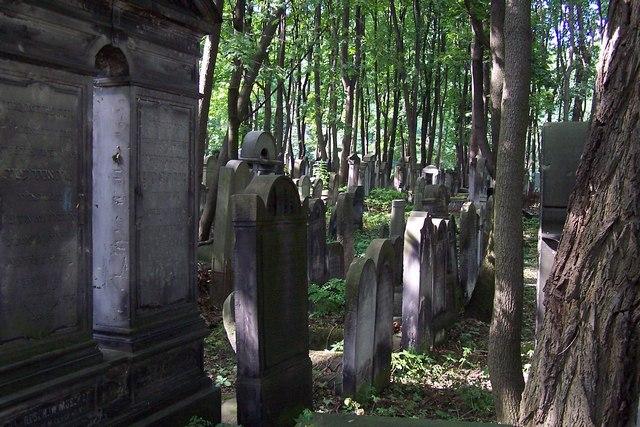 100_3685_ghetto ebraico_cimitero ebraico via opokowa.jpg