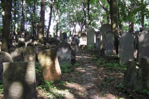 100_3697_ghetto ebraico_cimitero ebraico via opokowa.jpg