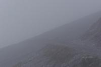01-100_1065_nella nebbia.jpg