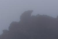 07-100_1074_forme nella nebbia.jpg