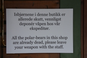 IMGP7787_Longyearbyen_armi