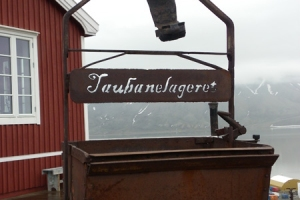 IMGP7875_Longyearbyen