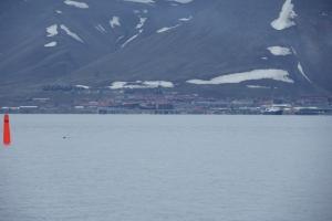 z-IMGP7783_Longyearbyen