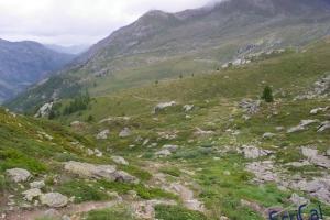 IMGP6191_percorso sentiero