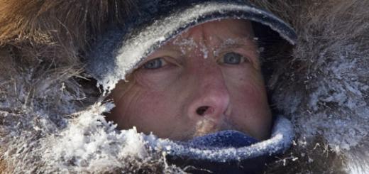 Si sta svolgendo la Iditarod: la corsa delle slitte trainate dai cani