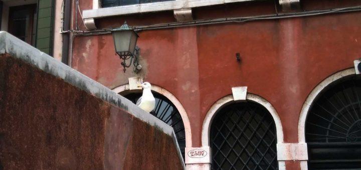 ghetto di Venezia visita
